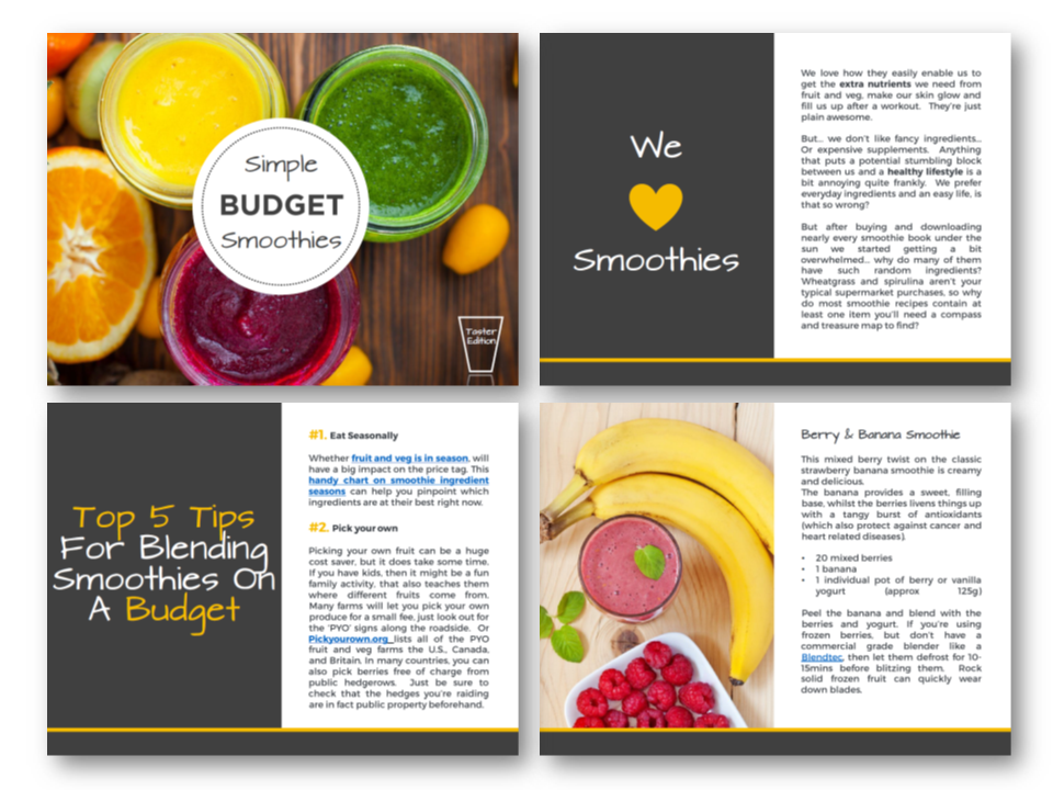Budget-Smoothie-Taster-Images